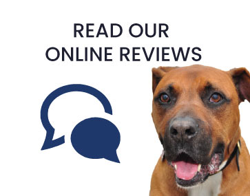Tulare Veterinary Hospital Online Reviews